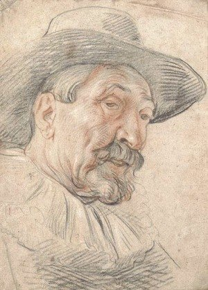 Jacob Jordaens - A bearded man