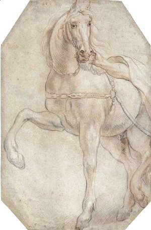 Jacob Jordaens - A harnessed horse looking to the right