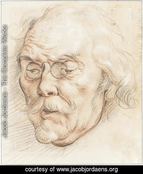 Jacob Jordaens - Head Of An Elderly Man (Adam Van Noort)